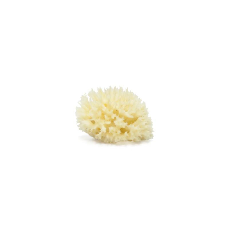 Burete Mediteranean Honeycomb 5cm